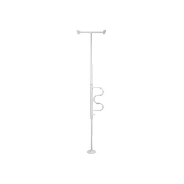 Security Pole & Curve Grab Bar